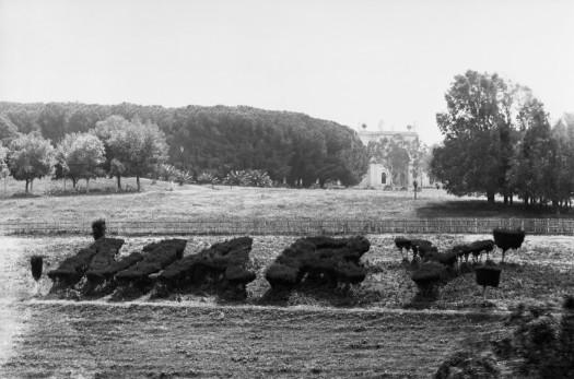 Villa Doria Pamphilj (c) Country Life